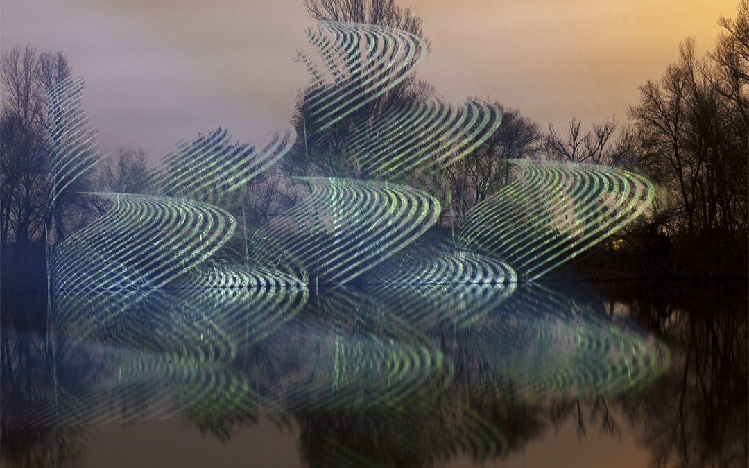2021 – Campo de Presencia | Javier Riera
