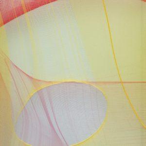 Serie Crosseider nº 25, 2020. Tejjido en caja de metacrilato, 35 x 25 x 5 cm.
